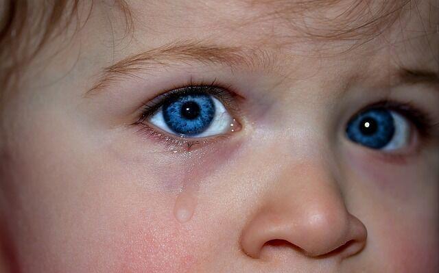 Gyermek szemében érzelem, intelligencia