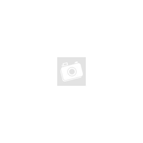 Kislányos tejfogtartó doboz
